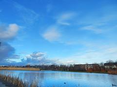 Afternoon at the park (monikajuriga) Tags: park ireland dublin lake nature water cloudy outdoor bluesky fathercollinspark nikonl820