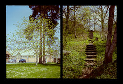 2016-04--05 - Olympus Pen EE - Kodak Ektar 100-14 (sarajoelsson) Tags: city urban color film analog pen spring diptych sweden stockholm snapshot olympus ishootfilm analogue halfframe everydaylife filmgrain vardag 2016 filmphotography penee filmisnotdead halvformat diptyk teamframkallning digitizedwithdslr