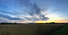 05:26 AM (Kyriakos11) Tags: grosgerau kyriakos11 sunrise morgenrte morgenstund morning germany deutschland sky wolken clouds himmel ngc