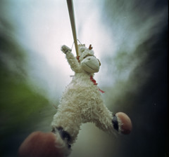 The gorge rope slide (wheehamx) Tags: pinhole soft toy adventure fairlie moor biglees