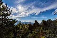 IMG_5859 (beareance) Tags: sun sunstar