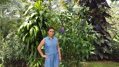 20160720_130336 (Mayan_princess) Tags: chiapas argovia finca resort caf coffee kaffee paraso paradise vegetacin vegetation verde green ro river spa relajacin relax forest selva orgnico autosostenible