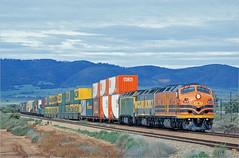 CLP13 at Coonamia (Bingley Hall) Tags: australia southaustralia transport train transportation rail railway railroad locomotive engine diesel streamliner bulldog geneseewyomingaustralia australiasouthernrailroad australianrailroadgroup arg asr gwa clydeengineering morrisonknudsen mka freight intermodal doublestack tolltrain coonamia portpirie clp13 railpage:class=61 railpage:loco=clp13 rpauclpclass rpauclpclassclp13 railpage:livery=39 emd 645e