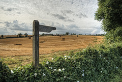 Byway near Up Sombourne in Hampshire (neilalderney123) Tags: 2016neilhoward winchestre upsombourne hampshire sign byway england landscape straw harvest