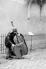 Chelista en Paris (nickylerario) Tags: monocromo monochrome blackandwhite blancoynegro paris monmartre streetphotography documental artistas callejero musicos arpa novia chello cello francia dibujos pintura pintores artist