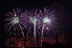 Chrysanthemums and Palm Trees Lighting Up The Night Sky (jANgsg) Tags: singapore night nightsky fireworks display ndp2016 preview 2