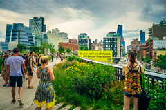 The High Line (Arutemu) Tags: nyc ny newyork newyorkcity nuevayork manhattan urban usa us unitedstates america american a7r sonya7r ilce ilcea7r mirrorless sigma 24mm city cityscape ciudad view metropolis manualfocus highline park midtown midtownmanhattan chelsea