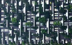 Bosco Verticale orizzontale (Lorenzo Cocco Photography) Tags: architettura milano architecture lombardy italy italia linee lines details dettagli contrasto contrast