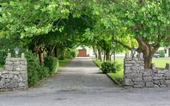 Living in style (the driveway) (Jonathan Palfrey) Tags: photo digital photomatix exposurefusion landscape house driveway kinvarra galway connacht ireland