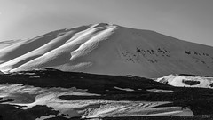 a snow drift resembling desert dunes (lunaryuna) Tags: iceland northiceland northfjords landscape panorama mountain snowcapped snowdift naturalpatterns windsweptloandscape snowpatterns blackwhite bw monochrome spring season seasonalchange lunaryuna