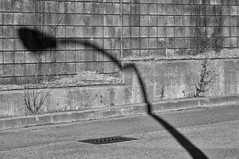 'Light and Shadow' (Canadapt) Tags: shadow light wall brick concrete weeds street pavement grate bw burnaby bc canadapt