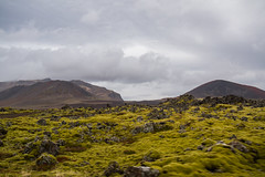 Berserkjahraun 43 (raelala) Tags: 2016 berserkjahraun snaefellsnes snaefellsnespeninsula canon1785mm crater europe europeantravel iceland icelanding2016 lava lavafield photographybyrachelgreene ringroad roadtrip scandinavia thatlalagirl thatlalagirlphotography thatlalagirlcom travel