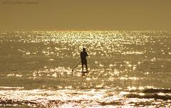 Belgian coast (Natali Antonovich) Tags: belgiancoast northsea sea water landscape wenduine parallels lifestyle relaxation horizon romanticism romantic silhouette reflection seasideresort seashore seaboard seaside