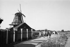 Tourist trail (Arne Kuilman) Tags: portra portra400bw blackandwhite film kodak scan v600 nederland netherlands retina retinaiiic camera analogue windmill windmills zaanseschans molen molens dijk tourists toeristen
