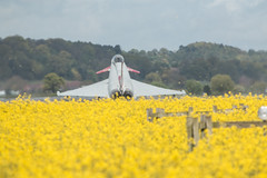RAF Shawbury 2015 (Advanced Biker) Tags: display jets camo typhoon raf shawbury zk349 zk353