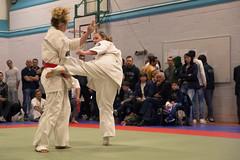 BKK/IFK English Open 2015 (xDiscobobx) Tags: sports action martialarts karate combat bkk folkestone fights ifk kyokushin ikk englishopen englishopen2015