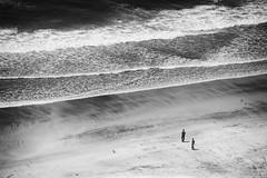 DSC08997 (mingzkl) Tags: bw beach sandiego teleelmaritm90mmf28 sonynex7 torreypinescitybeach