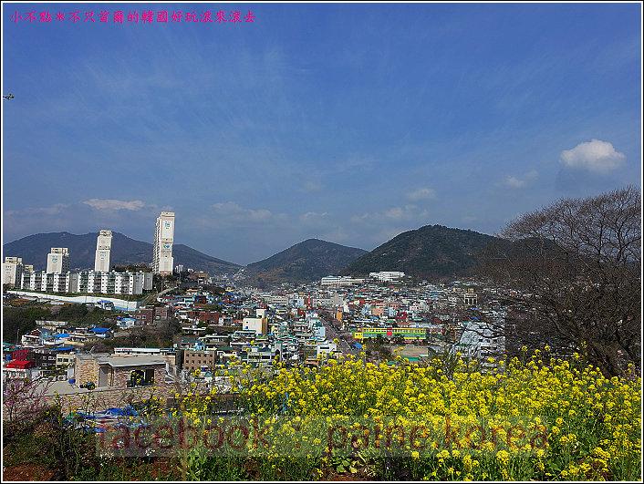 麗水海上纜車與紫山公園 (81).JPG