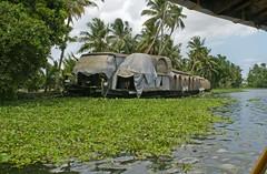 backwaters_6106 (Manohar_Auroville) Tags: sea india beach kerala luigi backwaters alleppey fedele manohar