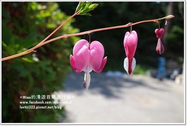 벽초지문화수목원63