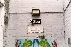 < Zoo (dichohecho) Tags: film analog analogue fujipro800z asahipentaxk1000 k07 dichohecho