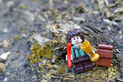 158/365 (Lost Star) Tags: lego lordoftherings adventures frodo day158 minifigures day158365 365the2015edition 3652015 7jun15