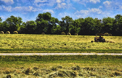 Man's Work (brian29841) Tags: trees plant tree field grass landscape driving pants outdoor farm south farming carolina leesburg farmer hay grassland tracktor leaseburg