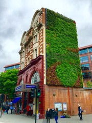 Living in the City (Ron Metcalfe) Tags: green london cityscape tubestation livingwall oldnew elephantcastle