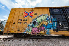 (o texano) Tags: houston texas graffiti trains freights bench benching grom