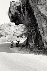A Face from Nature (rubal033) Tags: mountains ride road abu face nature canon70d canon