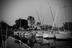 a Bon Port ... ( P-A) Tags: sport marina photos passion plaisir services amiti bassin plaisance quais aventure fraternit activit cvgr aylmerqc commodit portdattache simpa calmevoile
