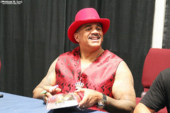 IMG_4825 (willdleeesq) Tags: wrestling godfather wwe wwf prowrestling thegodfather worldwrestlingentertainment papashango frankandsons nationofdomination kamamustafa