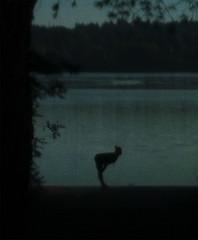 evening lakeside stretch (dotintime) Tags: evening gloaming nightfall lake water exercise stretch dotintime meganlane