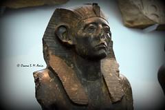 Statue of Senwosret III (Sumer and Akkad!) Tags: ramesses amenhotep abydos karnak thebes egypt statue pharaoh cobra vulture osiris isis sphinx ram falsedoor stele cat britishmuseum british museum bloomsbury london hathor luxor philae ptolemaicperiod middlekingdom newkingdom lateperiod ahmose thutmose giza saqqara memphis