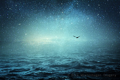 the sea & the universe (Dyrk.Wyst) Tags: ocean light sea bird texture water photomanipulation stars haze waves glow space horizon cyan surreal fantasy conceptual universe timeless saltwater composing photoshelter