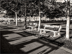 Benched - 2011 (Patricia Colleen) Tags: coalharbour vancouver