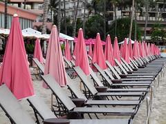 beach chairs /Pink Palace (kenjet) Tags: pink beach chair chairs row line am palace pinkpalace royalhawaiianresort royalhawaiianhotel waikikibeach oahu hawaii beachchair beachchairs umbrella umbrellas multiple empty