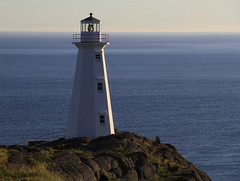 Lighthouse (Tracy Christina) Tags: ocean morning lighthouse capespear newfoundland canada july summer