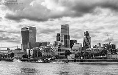 City Skyline (handmiles) Tags: mono monochrome blackandwhite bw city skyline architecture buildings water river london gherkin walkietalkie leadenhallbuilding tower42 outdoor outside out morelondon morelondonestate riverthames reflections sony sonya77mark2 sonya77m2 tamron tamron18200mm mileshandphotography2016