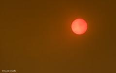Inferno (Photosuze) Tags: sun sky california fire smoke eerie sandfire july 23 2016