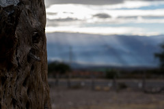 Rayos (Lechuza Fotografica) Tags: