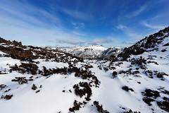 20160807-23-Florentine Peak in snow from Rodway Range (Roger T Wong) Tags: australia florentinepeak mtfield mtfieldnationalpark np nationalpark sel1635z sony1635 sonya7ii sonyalpha7ii sonyfe1635mmf4zaosscarlzeissvariotessart sonyilce7m2 tasmania bushwalk hike outdoors snow tramp trek walk winter