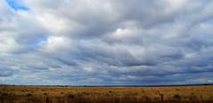 Passando pelo Jarau (Eduardo Amorim) Tags: campo field champ auffangen cielo céu sky nuvens nubes clouds nuages jarau cerrodojarau quaraí pampa campanha fronteira riograndedosul brasil brazil brésil sudamérica südamerika suramérica américadosul southamerica amériquedusud americameridionale américadelsur americadelsud eduardoamorim