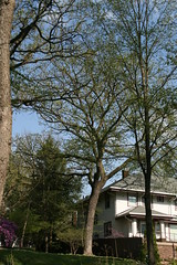IMG_7981 (krissos.photography) Tags: sky sunlight nature minnesota clouds landscape photography minneapolis partlycloudy naturephotography 2015 minnehahacreek minneapolisminnesota seasonspring mostlysunny monthmay
