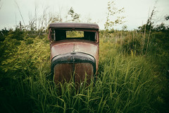(soulshine59) Tags: abandoned canon5d rustyoldcars beautifuldecay rustyoldtruck niksoftware