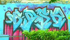 Mask1 (cocabeenslinky) Tags: park uk england urban streetart art june lumix graffiti photo artist grafitti photos graf hampshire panasonic portsmouth graff wimbledon southsea artiste pompey 2015 mask1 dmcg6 cocabeenslinky