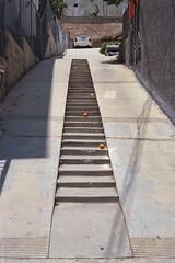 Steps with oranges (ADMurr) Tags: park leica la kodak echo steps driveway 400 40mm m6 rokkor
