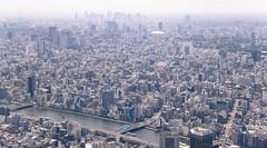Stacks (cara zimmerman) Tags: tokyo japan buildings skytree density dense city
