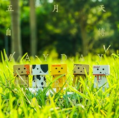 DSC07959-3 (brooke716@kimo.com) Tags: 阿楞 단보 ダンボー danboard danbo よつばと yotsubato toy 토이 toytravel