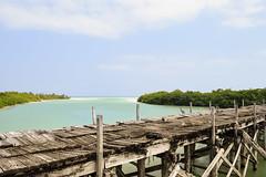 Boca Paila (Fer Moscoso) Tags: sky puente bridge bocapaila quintanaroo mxico mx tulum landscape beach playa sand muelle dock pelicano pelican caribe caribbean